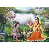 Krishna drinking the cow milk