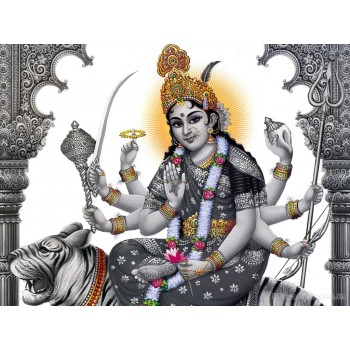 Shantha Durga on Tiger