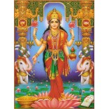 Goddess Lakshmi on Lotus